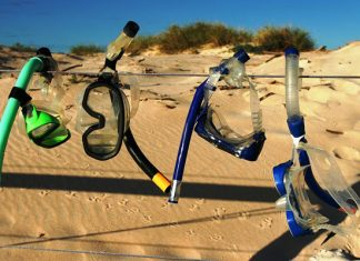 The-Best-Dry-Snorkels