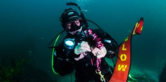 The-Best-SMB-for-Scuba-Diving
