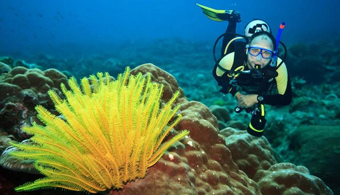 Breathing-Through-Your-Scuba-Dive-Regulator