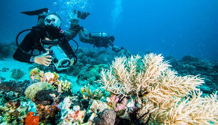 How-To-Prepare-For-A-Dive-Holiday