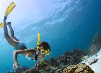 The-Best-Snorkel-Gear-Packages